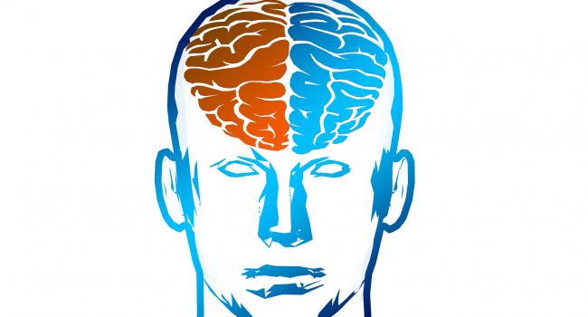 brain-2836404_1920